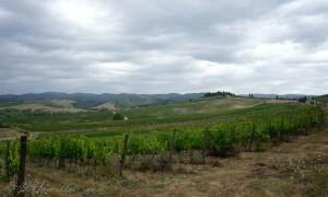 Долина кьянти в тоскане
