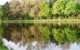 Реки Саксонии