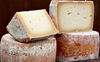 Из какого молока делают сыр пекорино
