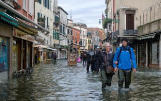Сегодня в венеции