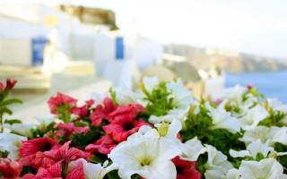 Погода в греции в апреле мае