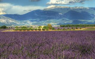 Долины Прованса-Альпы