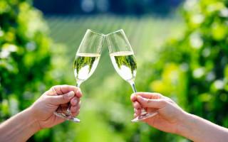Франчакорта игристое вино