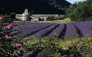 Монастыри Франции